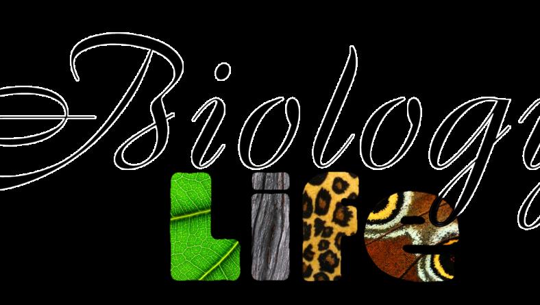General Science : Biology Quiz 2